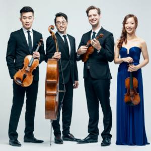 Rolston String Quartet - Shane Gray